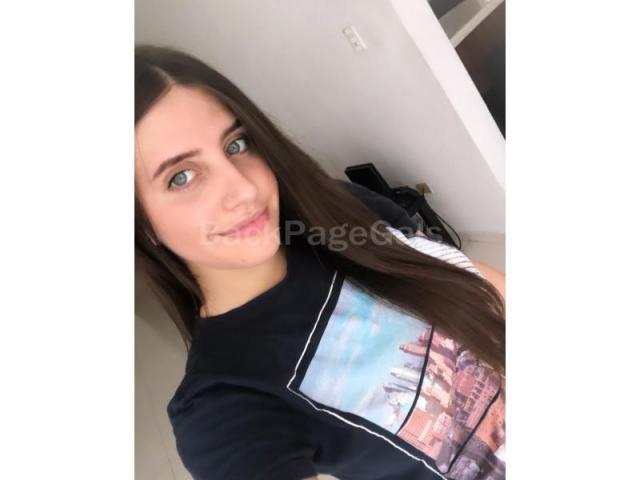 Perrita Online 24-7 - 2