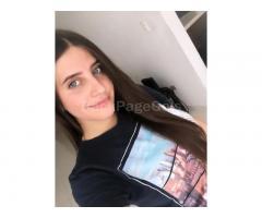 Perrita Online 24-7 - Image 2