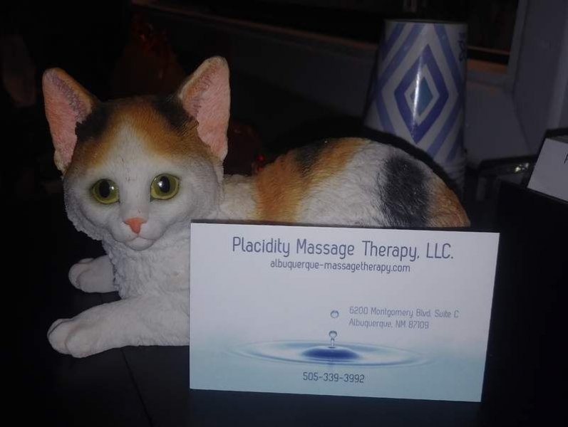 Placidity Massage Therapy, We are happy to see you - 2