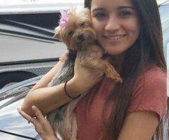 Savannah female escort - 💧⎷💦MY APARTMENT TOTALLY FREE 💧⎷💦 I'M AVAILABLE 24/7 DAYS💧⎷💦