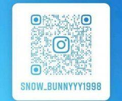 snow bunny in Carolina Beach area❄🐇😍🥰 - Image 1