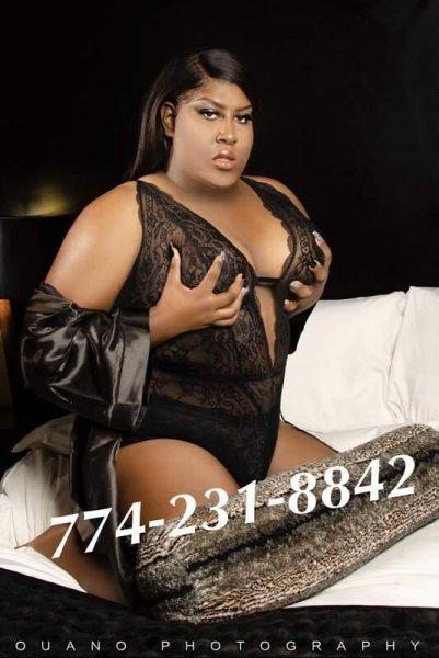 VISITING TAMPA EXOTIC BBW ASHELY !! CALL NOW 774-231-8842 - 3