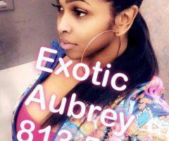 Orlando TS escort female escort - Last Day hurry!TH E eXoTiCVixen TREAT } [★] {Domincan }★ ] { τθρ Qυαℓιτγ