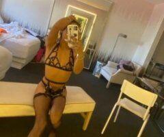 San Diego TS escort female escort - ‼🥵HOT MIXED MAMI 🥵6 1 9. 7 8 0. 5 8 8. 9