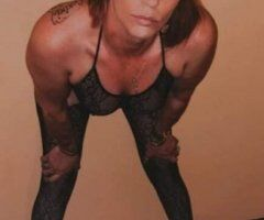 Biloxi female escort - 🐈🐈 HONORARY MEMBER OF 🐈🐈THE FAT KITTY CLUB🐈🐈
