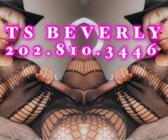 Salt Lake City TS escort female escort - ⚧OUTCALL ONLY ⚧CARAMEL TREAT WITH CREAM BEVERLY BABY💋💋