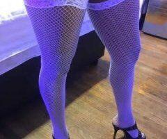 Orange County female escort - Sweet kitty Morning Dew