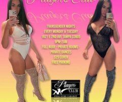 Tampa TS escort female escort - TS STRIPPERS MONDAYS AND TUESDAYS